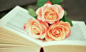 Французские романы для беллетристок
