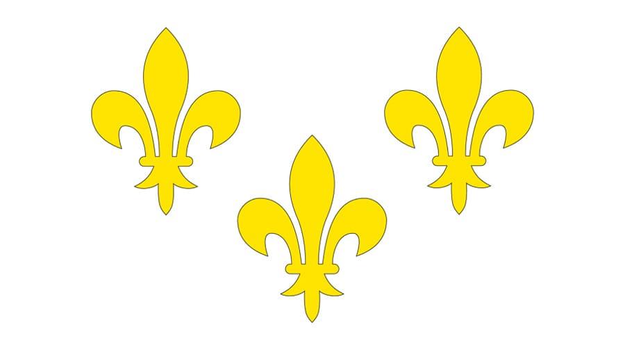Флаг Франции с тремя лягушками